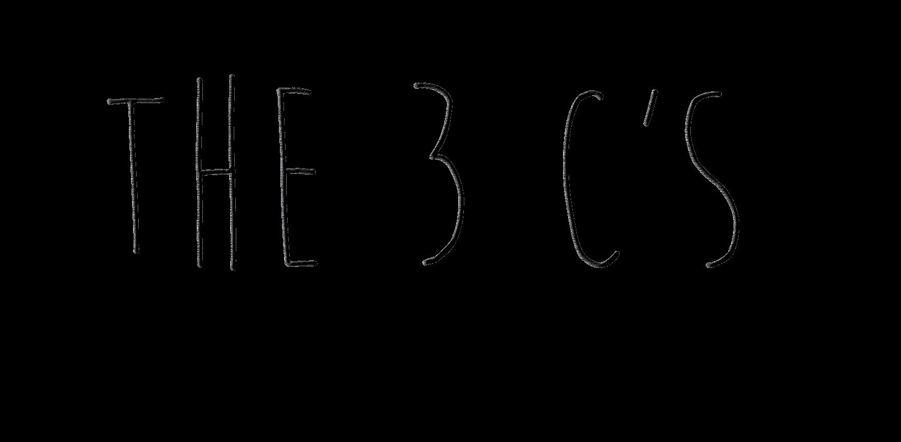 3 cs-01