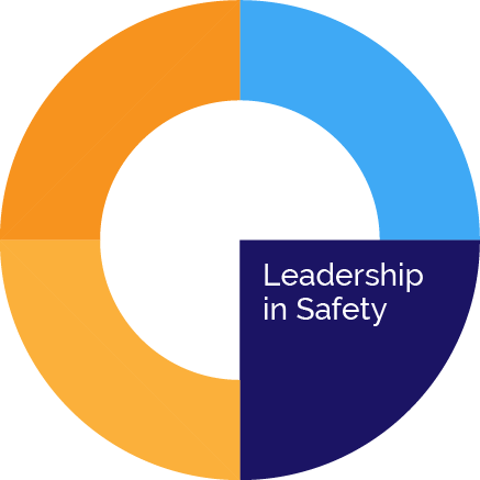 Leadership-in-Safety-icon
